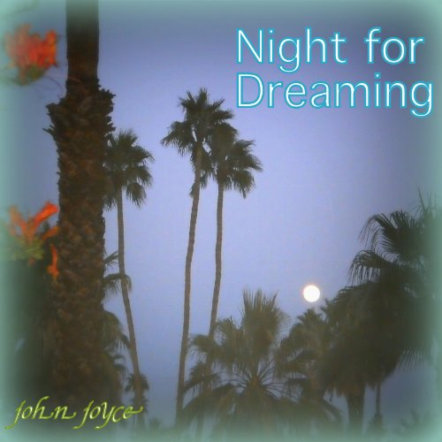 Night for Dreaming audiobook cover art
