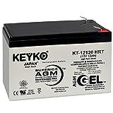 Razor MX500/MX650 Battery Pack W15128190003 12V 12Ah Battery - Fresh & Real 14.0 Amp - Gel Deep Cycle AGM/SLA Designed for Scooters - Genuine KEYKO KT-12120 HRT - F2