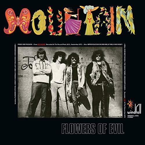Flowers Of Evil 180 Gram Black Vinyl product image
