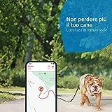 Recensione 1 Tractive Localizzatore GPS Cani 2021