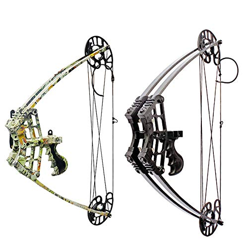 ZSHJG Archery Compound Bow Kit 40lbs Complete Triangle Hunting Bow All Accessories Competition Composite Bow with Carbon Arrows for Outdoor Shooting (Black)