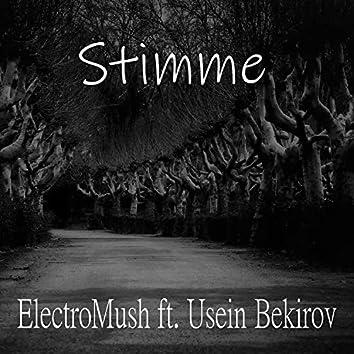 Stimme (feat. Usein Bekirov)