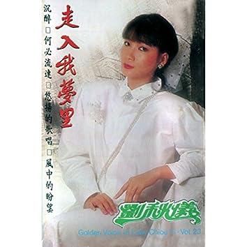 劉秋儀, Vol. 23: 走入我夢裡 (修復版)