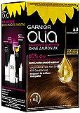 Garnier Olia Haar Coloration Karamellbraun