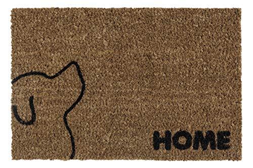 andiamo Schmutzfangmatte Kokos Hund Fußmatte für innen und außen, 40 x 60 cm