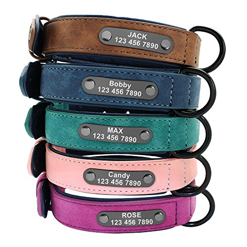 Didog Custom Leather Dog Collars with Personalized Engraving Nameplate,Personalized Padded Dog Collars Engraved for Small Medium Large Dogs,Green,L Size