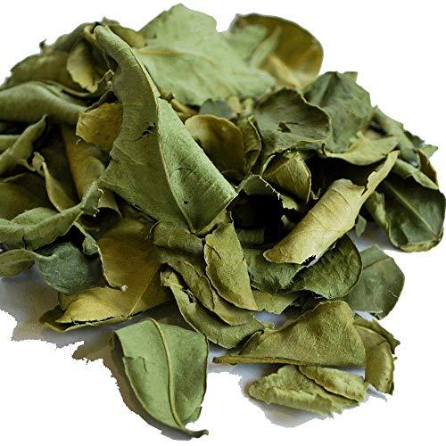 コブミカン バイマックル 10g カフィア ライム kaffir lime プルット スワンギ 瘤蜜柑