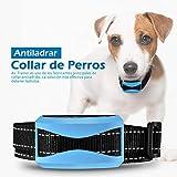 Collar Antiladridos para Perros, Collar Ladridos Perro 7 Nivelesm, Sonido y Vibración Sensibilidad, Collar Adiestramiento Impermeable IP65, Correa Ajustable Nylon para Perro 7-54kg