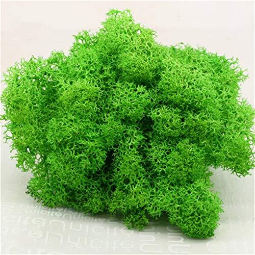 NIRIBALLA Planta Verde Artificial Inmortal Flowa Fake Musgo Hierba Hogar Sala de Estar Pared DIY Flower Mini Accesorios (Color : A)