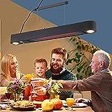 BKWJ Elektrischer Heizstrahler zur Deckenmontage, LED-Beleuchtung, 1500 W hängender Terrassenheizstrahler mit Fernbedienung, wandmontierter Infrarotstrahler für den Hausgarten,Schwarz