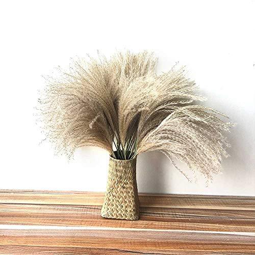 SSSSY 40 stks pampas gras decor gedroogde bloemen Natuurlijke planten gedroogd boeket Hand geweven Rieten Mand Zeegras thuis bruiloft decoratie