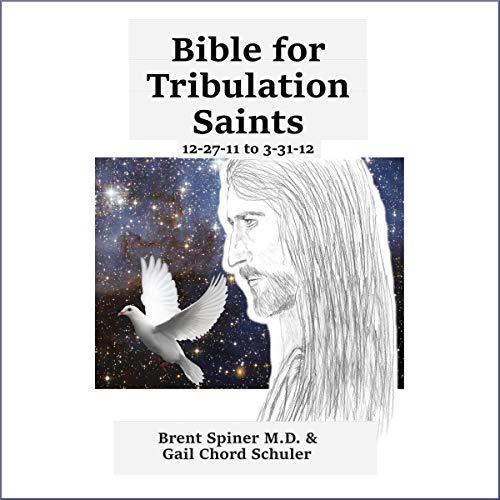 Bible for Tribulation Saints audiobook cover art