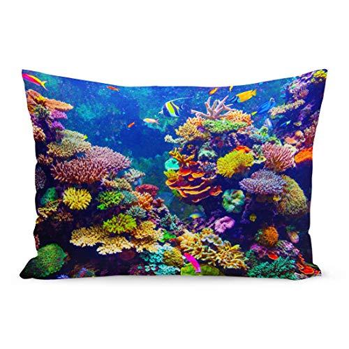 CDMT-XU1 Dekokissenbezüge Red Fiji Coral Reef und Tropische Fische im Sonnenlicht Singapore Aquarium Blue Sea Kissenbezug 20x30 Zoll