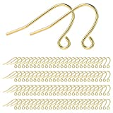 Earring Hooks 14K Gold Plated Hypoallergenic Ear Wires for DIY Jewelry Findings Unisex(200PCS, 100...