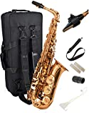Herche Superior Alto Saxophone | Professional Grade Musical Instruments for All Levels | High F# Key | Complete Set w/Backpack Carrying Case, Neck Strap, Alto Sax Reeds, Cork Grease & Service Plan