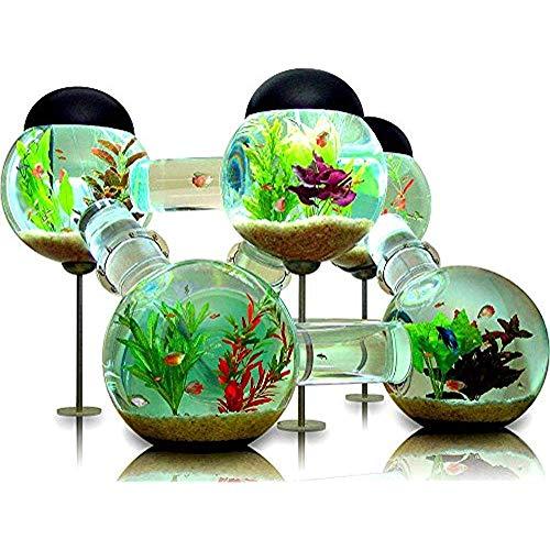 Diuangfoong Labyrinth Aquarium Canvas Art Print Wall Art for Home Decor 12x16 Inches