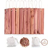 GOGOUP Cedar Blocks for Clothes Storage, Hanger & Chips Bag with Light Cedar Fragrance Odor Protection for wardrobes Closets and Drawers Freshener Clothes 10-Pack