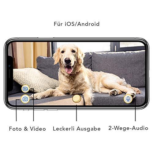 Furbo Hundekamera: Full-HD-Wifi-Haustierkamera mit 2-Wege-Audio, Leckerli-Ausgabe und Bell-Alarm (bekannt aus VOX hundkatzemaus) - 4