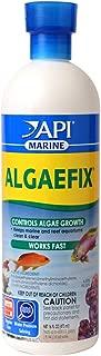 dino algae control