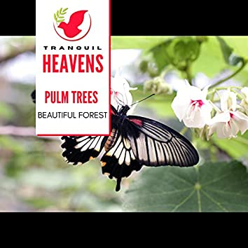 Pulm Trees - Beautiful Forest