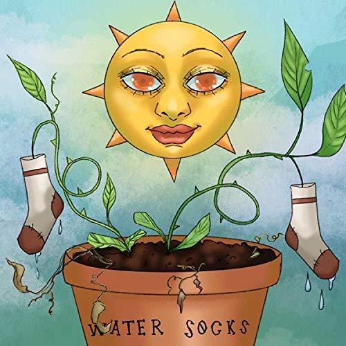 Water Socks