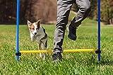 Diggar Agility-Training para Perros Slalom Tunnel Sprungring Hürde Hundesport Training neumáticos...