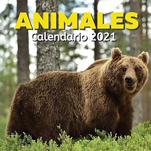 Calendario 2021 Animales: Regalos Amantes Animale Para Mujer, Hombre o Niños: Cumpleaños y Navidad