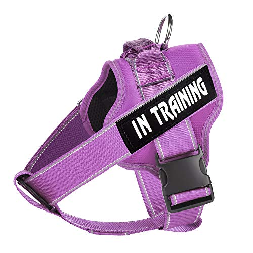 WOCUME Upgrade Dog Harness Padded Adjustable Pet Vest Harness with Handle, Front Clip Vest Harness 3M Reflective Pet Harness for Large Dogs Training or Walking (S, Purple)