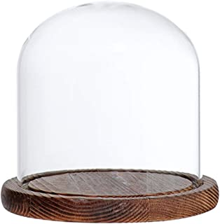 Perfk Glass Bell with Dome and Wooden Base - Brown E, as described