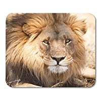 マウスパッドサファリブラックアフリカライオン肖像画動物アフリカマウスマットマウスパッド