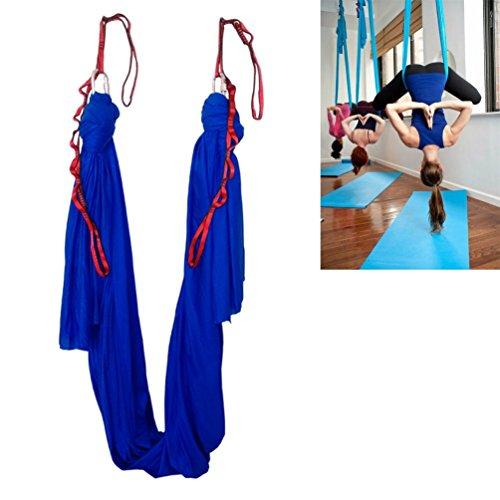 Wellsem® amaca per pilates, antigravity yoga con moschettoni e daisy chain, Deep Blue