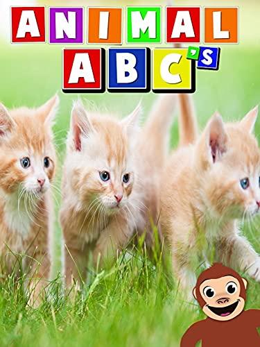 Animal ABC s