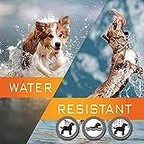 IMG-3 collare antipulci cane impermeabile design