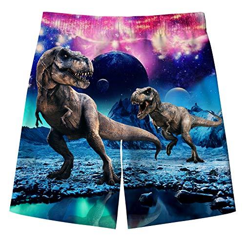 IDGREATIM Pantalones cortos de playa de secado rápido con forro de malla de 5 a 16 años, Dinosaurio, 5-6 Años