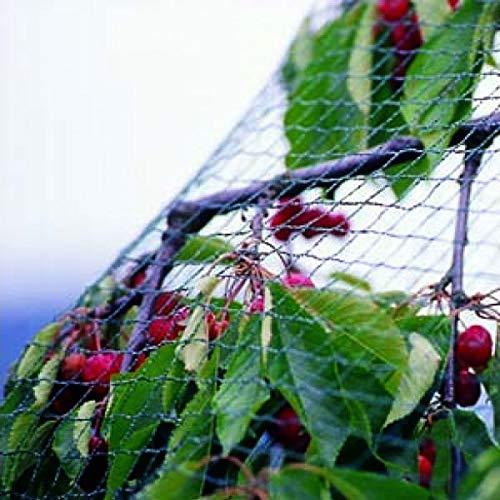 Tech-Garden Filet de Jardin Anti-Oiseaux de qualité exceptionnelle, Solide et Doux pour Arbres fruitiers, légumes et Plantes-Prévention Dissuasive sans Danger 2 m x 5 m Vert