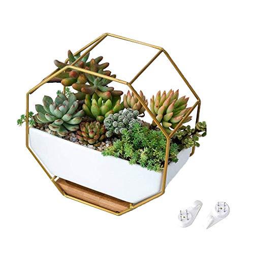 CZF ES Fioriere Da Parete Geometrico, Ceramica Succulento Fiore Vaso, Geometrico Hanging Fioriera Da Parete, Per Piante Grasse,Cactus,Fiori Artificiali,Piante Ad Aria