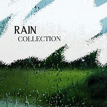 2020 Peaceful Rain & Nature Collection