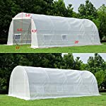 MELLCOM 20' x 10' x 7' Greenhouse Large Gardening Plant Hot House Portable Walking in Tunnel Tent, White 16 【8 ROLL-UP SIDE WINDOWS】-The green house eight roll-up windows have mesh netting to allow for cross ventilation and climate control. 【HEAVY DUTY STEEL FRAME】-Walk-in Garden Greenhouse solid steel construction with a galvanized finish, which is resistant to rust, chipping, and peeling. 【TRANSPARENT PLASTIC COVER】-The tough, durable and transparent PE plastic cover protects plants while allowing nourishing sunlight to pass through. The cover can be easily attached to the frame with the included tethers and single-sided tape.