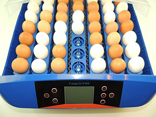 Campo24® V56S Motorbrüter für 56 Eier/Inkubator/Vollautomatischer Motorbrüter/ Incubator - 4
