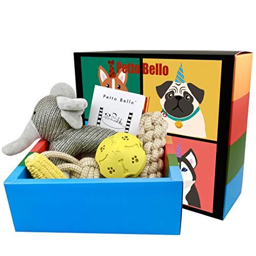 Petto Bello Geschenkbox mit 5-teiligem Set aus Hundespielzeug, Kauspielzeug, Leckerli-Spender für Hunde-Zahnpflege...
