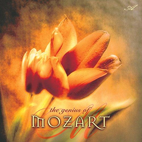 Piano Sonata No. 16 in C Major, K. 545, Facile Sonata: III. Rondo