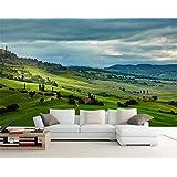 山笑の美 3d壁紙牧歌的な風景プレーリーヒルズ大壁画リビングルームベッドルームテレビ背景壁紙-350X250CM