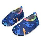 L-RUN Toddler Baby Boys Girls Aqua Socks for Beach Sand Shark 0-6 Months=EU15-16