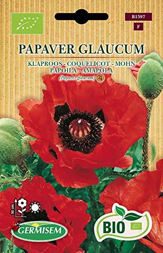 Germisem Orgánica Papaver Glaucum Semillas de Amapola 0.5 g