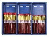 Royal Brush Big Kids Choice Brush Bonus Flat Classroom Pack, Assorted, Set of 72 Brushes and 12 Aprons - 406839
