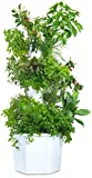 Aerospring Hydroponic Tower - Vertical Herb & Vegetable Garden - 27 Plant Grow System