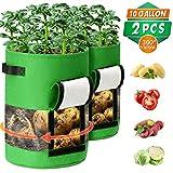 CAVEEN Bolsas de Cultivo de Papa, Bolsa de Cultivo de Plantas, Tela no Tejida Bolsa para Plantar para Papa, Zanahoria, Tomate y Cebolla (2 Piezas - 10 Gallons, Verde)