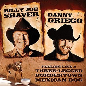 Feeling Like a Three-Legged BorderTown Mexican Dog