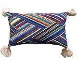 "FLBER Decorative Lumbar Pillow Tassel Velvet Throw Pillow Cover,12""X20"""