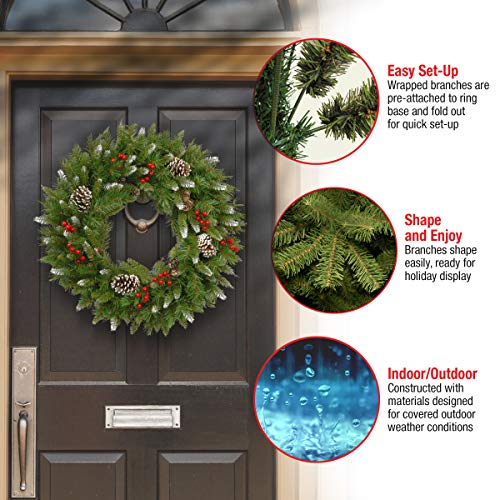 National Tree Company Pre-lit Artificial Christmas Wreath | Flocked with Mixed Decorations Berry-24 Inch, 24 Inch, Frosted Berry